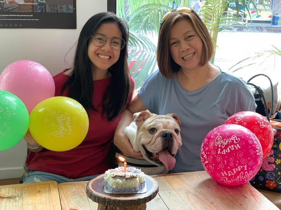 Two ladies and an English Bulldog with a birthday cake and balloons.
