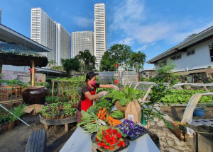 Be Inspired: Get To Know The Urban Farmers Of Bel Air